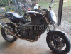 Permuto Triumph Speed Four