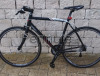 City bike Wylier Triestina Asolo,