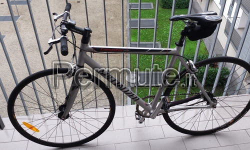Specialized langster comp (bicifissa)