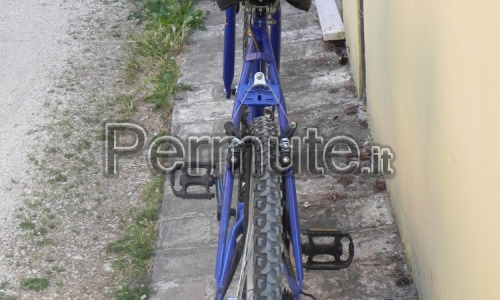 mountan bike adulto