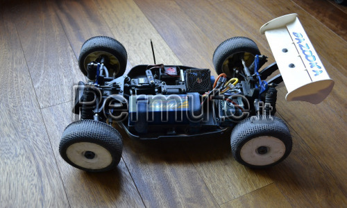 Buggy gs storm brushless 1/8