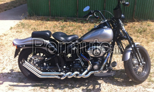 Harley Davidson Softail Cross Bone Springer